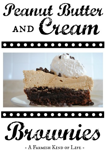 Looking for something a littely chocolatey, a little peanut buttery, and a lot of awesome? -- Peanut Butter and Cream Brownies - A Farmish Kind of Life