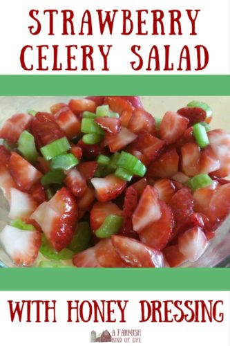 Looking for something different to bring to the next potluck or picnic? Try Strawberry Celery Salad with Honey Dressing. People will be asking you for the recipe - I promise!