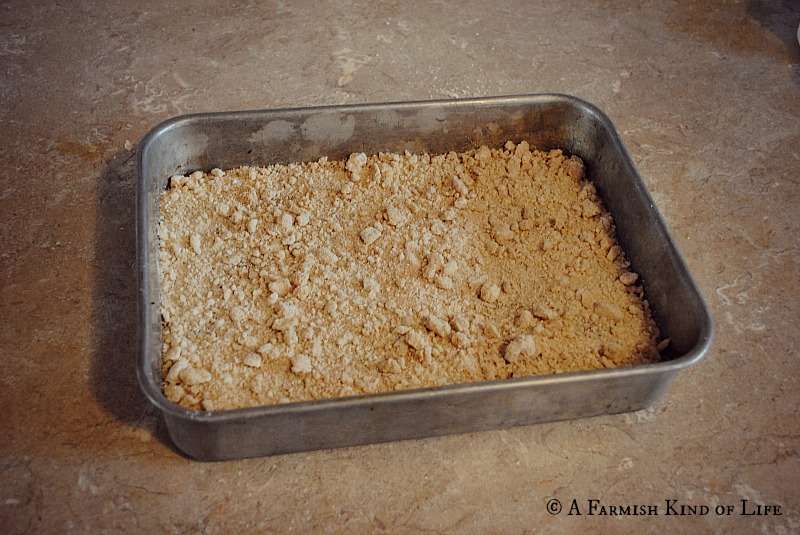 Amish Coffee Cake