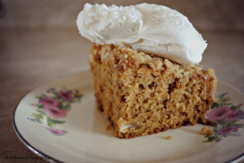 Amish Coffee Cake