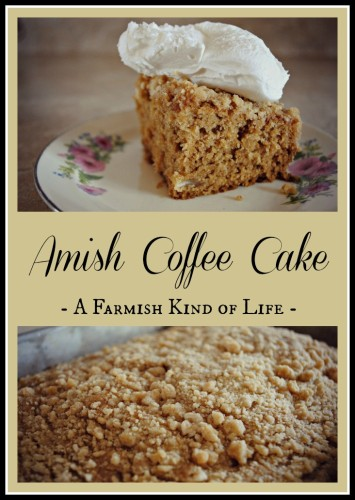 Amish Coffee Cake - where there is coffee IN the batter!