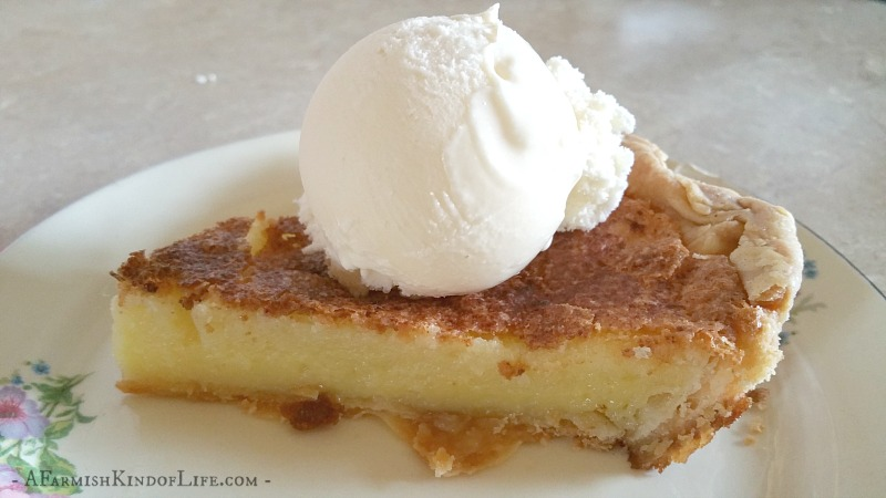 Want a different sort of pie that is sweet, delicious, and fun? Try Hillbilly Buttermilk Pie! - A Farmish Kind of Life