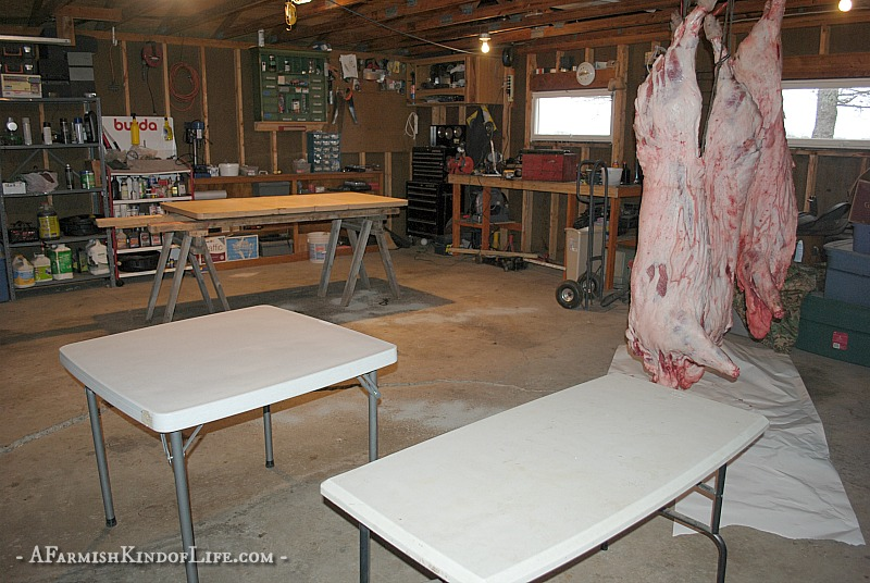 Want to process your pig at home, but aren't sure what cuts of meat come from where? Let me show you how to find the bacon, ham, ribs, and pork chops! - How to Butcher a Pig: Cuts of Meat - A Farmish Kind of Life