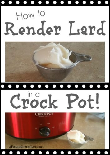 Think rendering lard is a complicated process? It's not when you use your slow cooker. Find out how here -- How to Render Lard in a Crock Pot - A Farmish Kind of Life