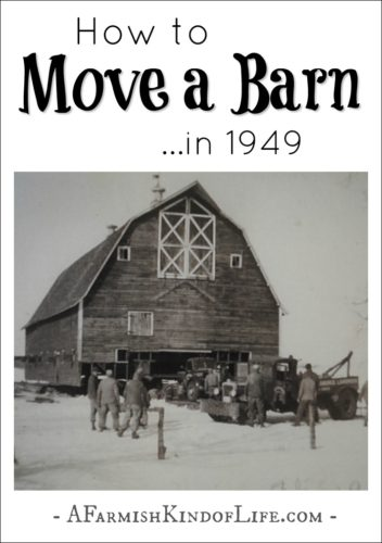 Moving a barn is hard work, especially is it's the year 1949. Hear the story about how our big red barn (that was built in 1918) came to rest in the spot it currently sits. -- How to Move a Barn in 1949 - A Farmish Kind of Life