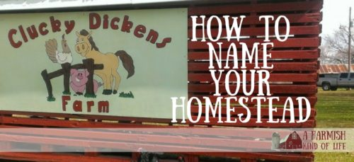 Naming your homestead adds a certain amount of charm to your place. But how does one go about choosing a name that fits? Here are a few tips...