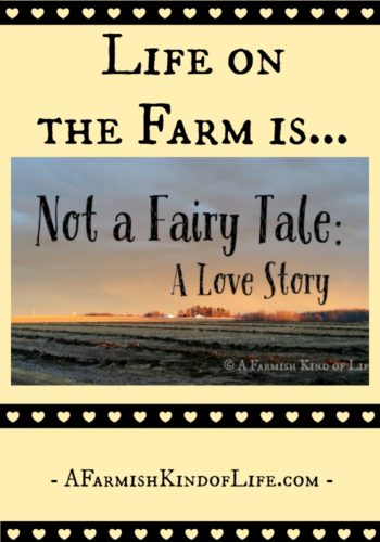 Not A Fairy Tale: A Love Story - A Farmish Kind of Life