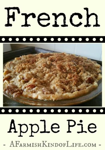French Apple Pie - apple pie with a yummy crumbly top! -- A Farmish Kind of Life