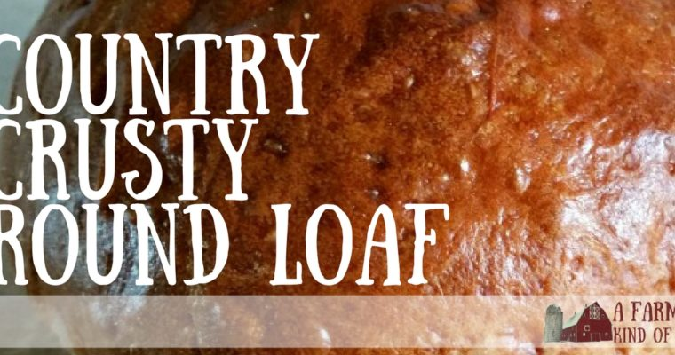 Country Crusty Round Loaf