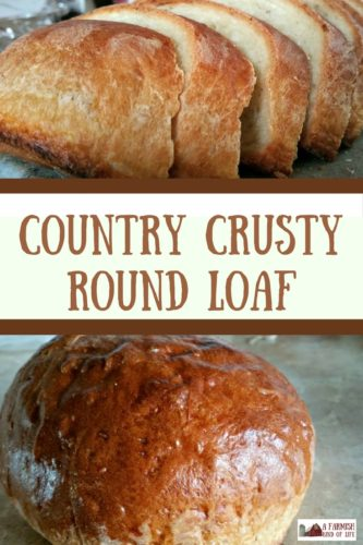 Looking for a crusty round loaf that is easy to make and tastes delicious? I love this Country Crusty Round Loaf - it's one of our three favorite breads here!