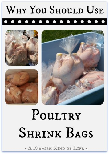 Why You Should Use Poultry Shrink Bags