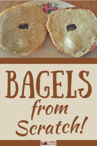 What's better than bagels? Bagels from scratch. Here's how you can learn to make bagels from scratch like a boss. Own your kitchen, and possibly the world.