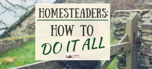 We're all searching for that elusive trick on how to do it all. All the things! Well, as a farmgirl, homeschool mom, and author, I've figured it out...