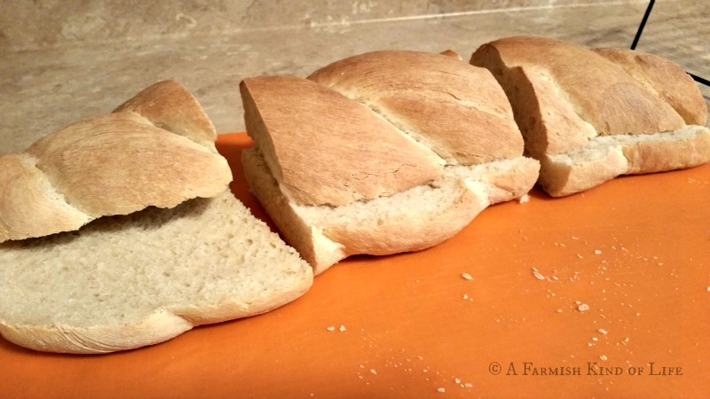 Here are my five go-to homemade bread recipes: they taste good, they're easy, and they don't take all day. Check to see if they will be your favorite, too!