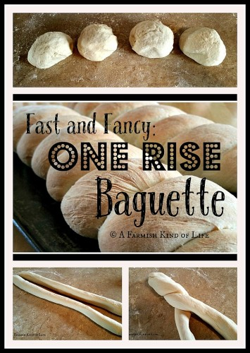 One Rise Baguette in 90 minutes - fast and fancy!! - A Farmish Kind of Life