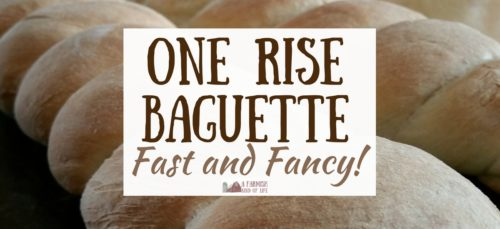 Impress your family, friends, and taste buds with this homemade one rise baguette. Best thing? It only takes 90 minutes from start to finish.