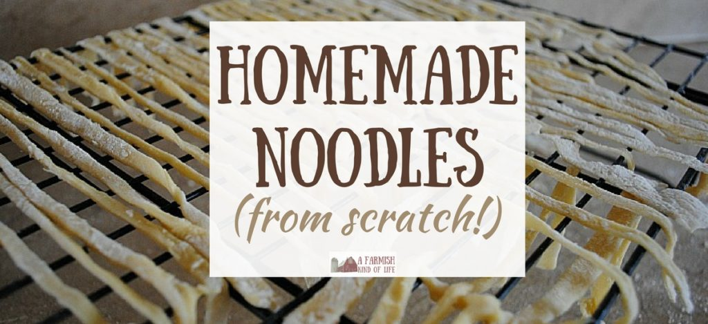 Ever wanted to make homemade noodles from scratch, but thought it was too hard? Pshaw. You can totally do this. It only takes four ingredients!