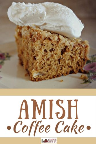 Some coffee cakes actually have coffee in the batter. Such is the case for Amish Coffee Cake, a light and delicious treat.