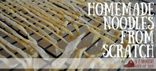 Buy noodles at the store? Pshaw. You can totally make these yourself.