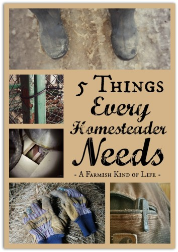 Five Things Every Homesteader Needs