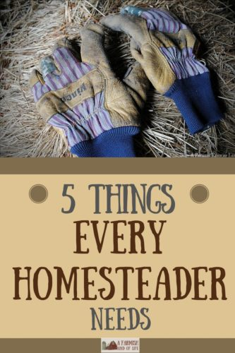There are many things every homesteader needs to accomplish their day to day work, but here are the five I use almost every single day.