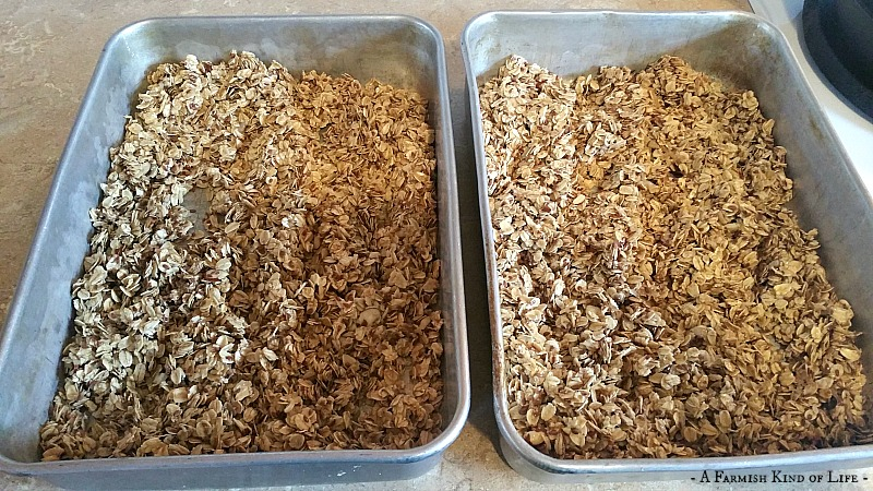 Fast and Slow Simple Granola