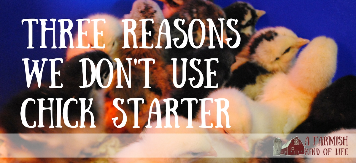 Three Reasons We Don't Use Chick Starter