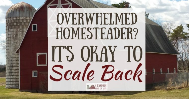 Overwhelmed Homesteader: It's Okay to Scale Back