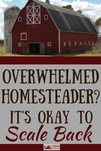 Feeling like an overwhelmed homesteader? Sometimes it's necessary to scale back—way back—and it's perfectly okay. (Repeat until you believe it.)