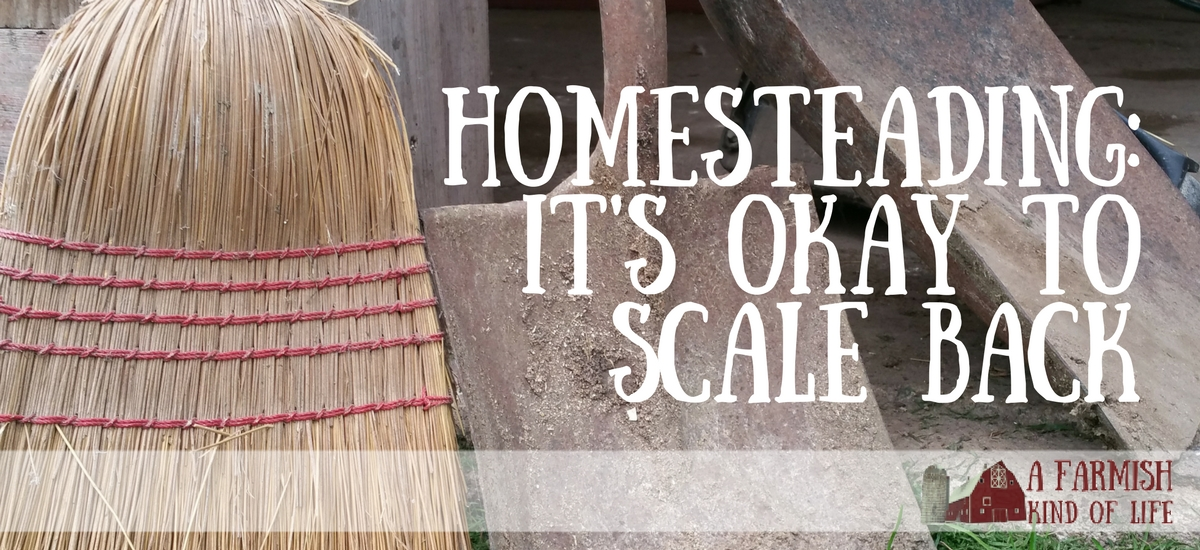 Homesteading: It's Okay to Scale Back
