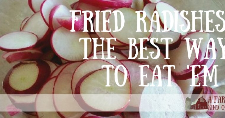 Fried Radishes: The Best Way To Eat 'Em