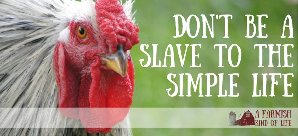 The simple life is not all or nothing. Don't be a slave to the simple life. - A Farmish Kind of Life