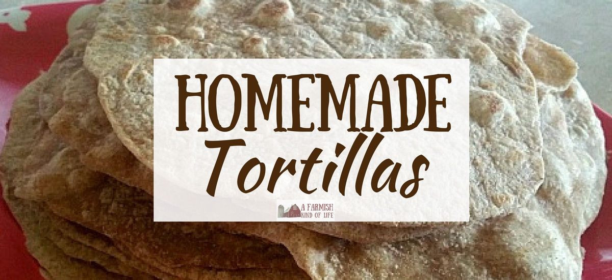 Homemade Tortillas (and What To Put On Them!)