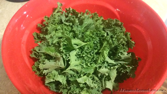 Have you ever tried this? It's our favorite way to enjoy kale! -- Baked Kale Chips - A Farmish Kind of Life