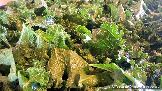 Have you ever made these before? It's our favorite way to enjoy kale! -- Baked Kale Chips - A Farmish Kind of Life