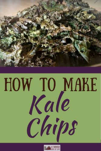 If you love kale like I love kale, then you'd best be making kale chips. Better than Pringles, and they might even earn you a kiss...