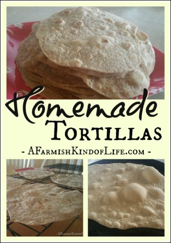 Why buy these in the store when they are so easy to make? -- Homemade Tortillas (and What to Put on Them!) - A Farmish Kind of Life