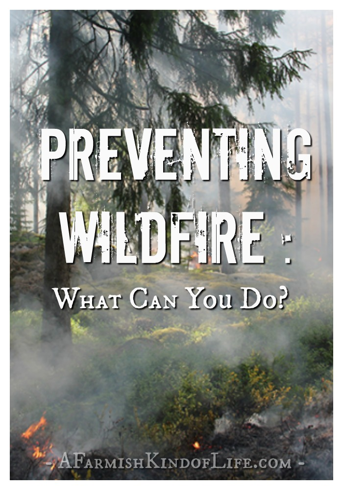 Preventing Wildfire - What Can You Do? - A Farmish Kind of Life