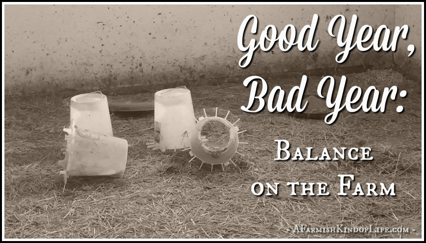Good Year, Bad Year: Balance on the Farm - A Farmish Kind of Life