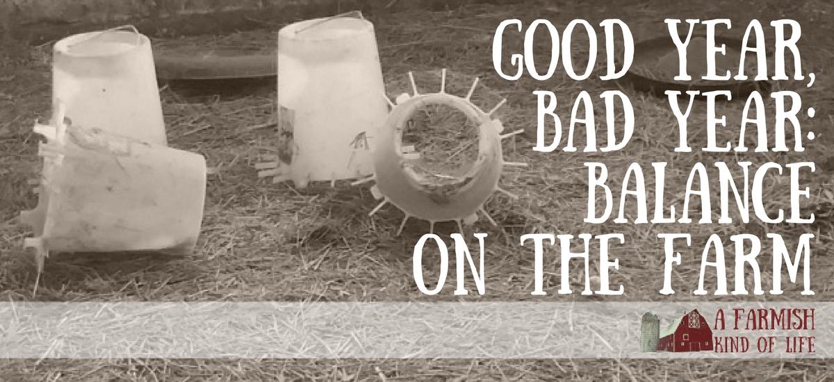 Good Year, Bad Year: Balance on the Farm