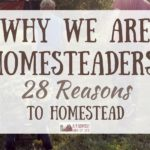 Why We Are Homesteaders: 28 Reasons to Homestead