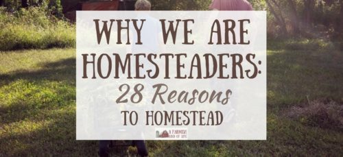 Listen up as 28 people give their reasons to homestead, and explain why they were drawn to the homesteading life. There are many different reasons!