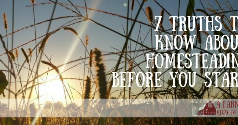 7 Truths To Know About Homesteading Before You Start