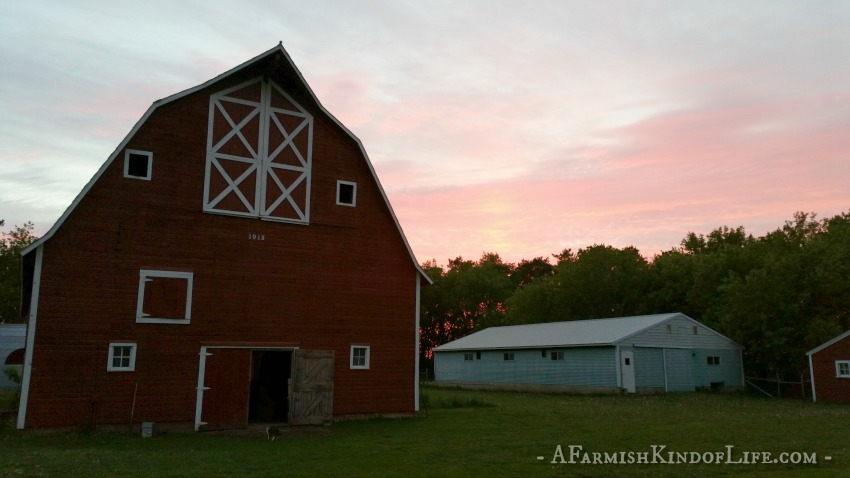 7 Things to Know Before You Become A Homesteader - A Farmish Kind of Life