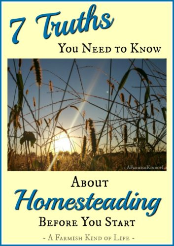 7 Truths You Need to Know About Homesteading Before You Start - A Farmish Kind of Life