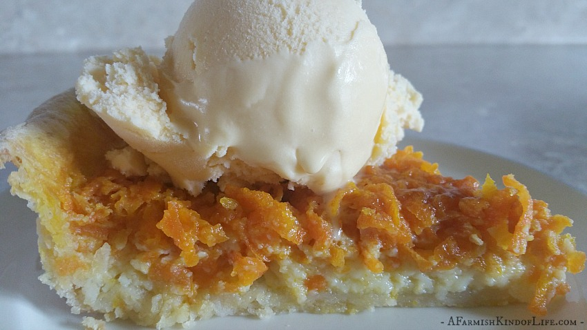 Carrot Pie: Yes, I'm Serious - A Farmish Kind of Life