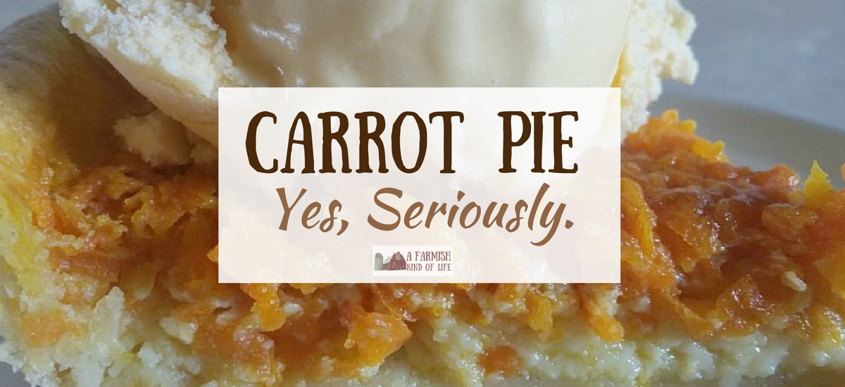 Carrot Pie: Yes, I'm Serious