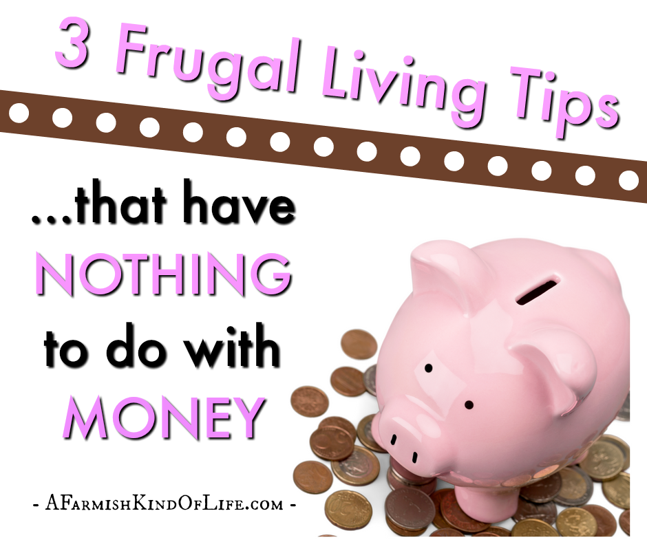 3 Frugal Living Tips that Have Nothing to do With Money - A Farmish Kind of Life