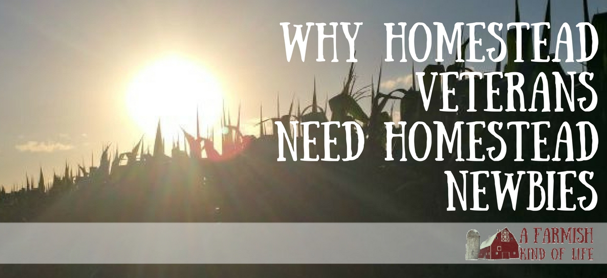 Why Homestead Veterans Need Homestead Newbies