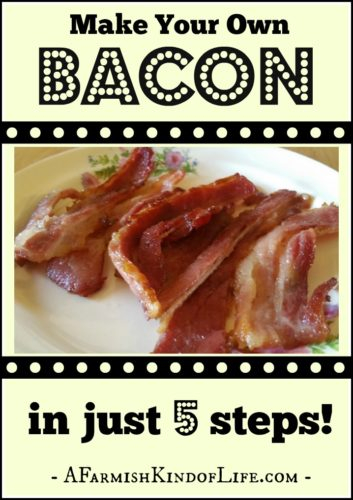 Raised your own pig for butchering? Now it's time to learn to turn that pig into bacon. You can totally do this at home! -- Make Your Own Bacon in Just 5 Steps! - A Farmish Kind of Life